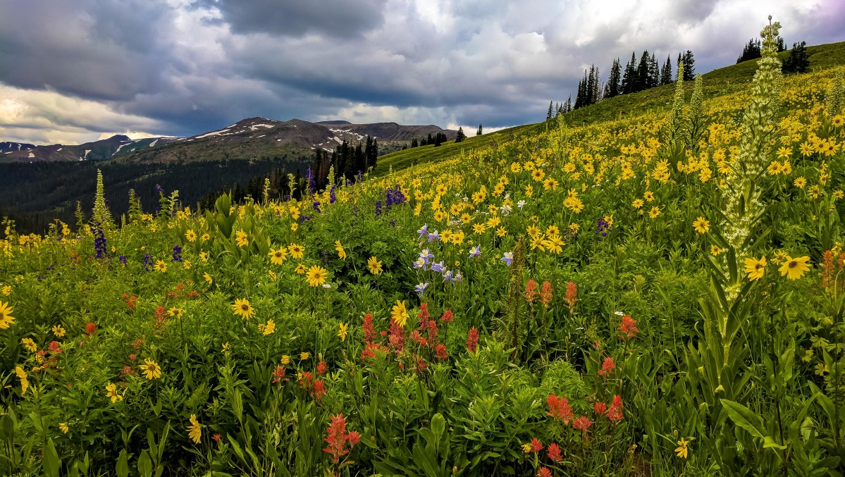 Hiking from Aspen to Crested Butte